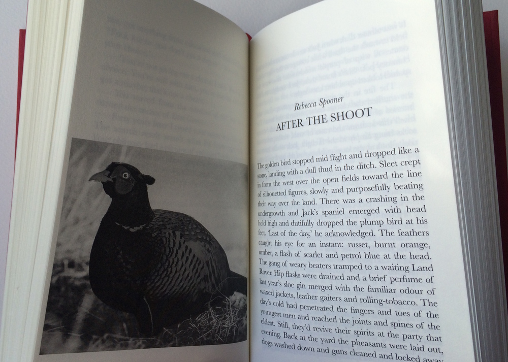 'A Fall into Grace romantic writing from Wales' Hard Back Edition,Published by Addo 2015 - image shows:story and illustration by Rebecca Spooner