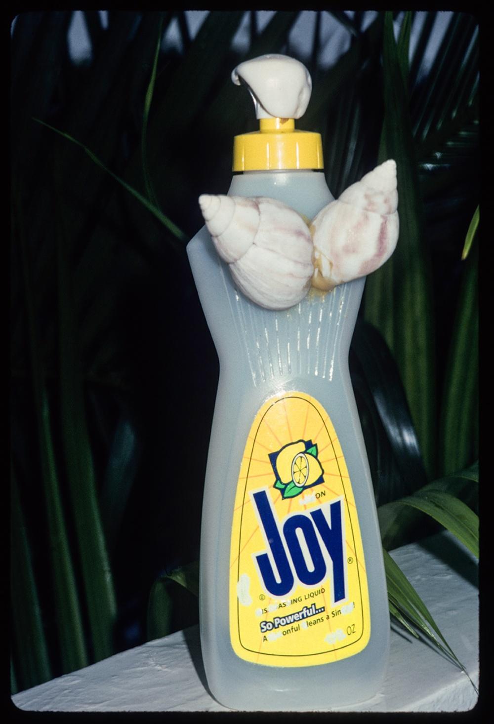 Natural Joy