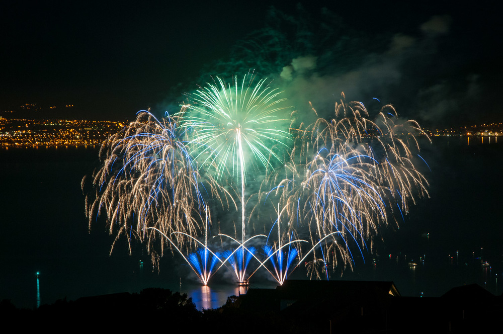 wellington-fireworks-2014