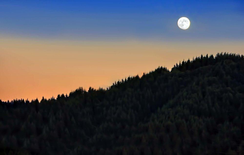 Pacific Sunrise.jpg