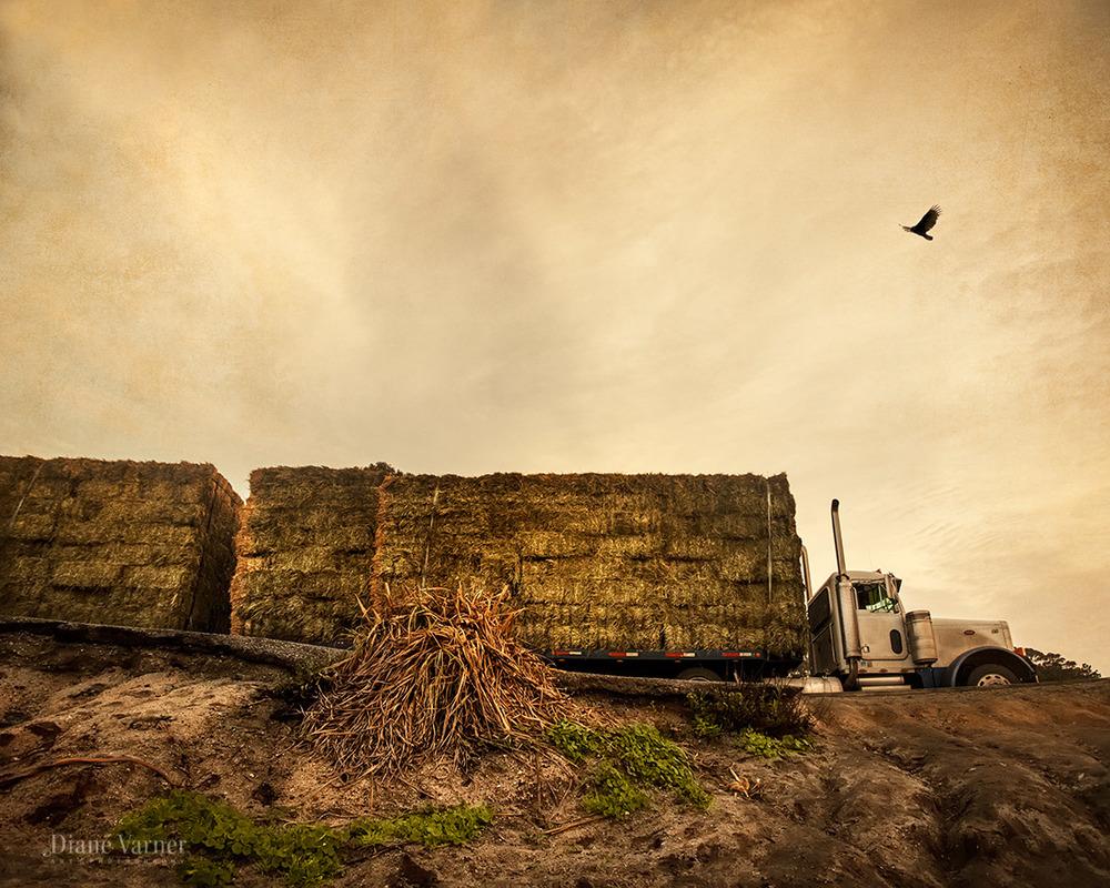a truckload