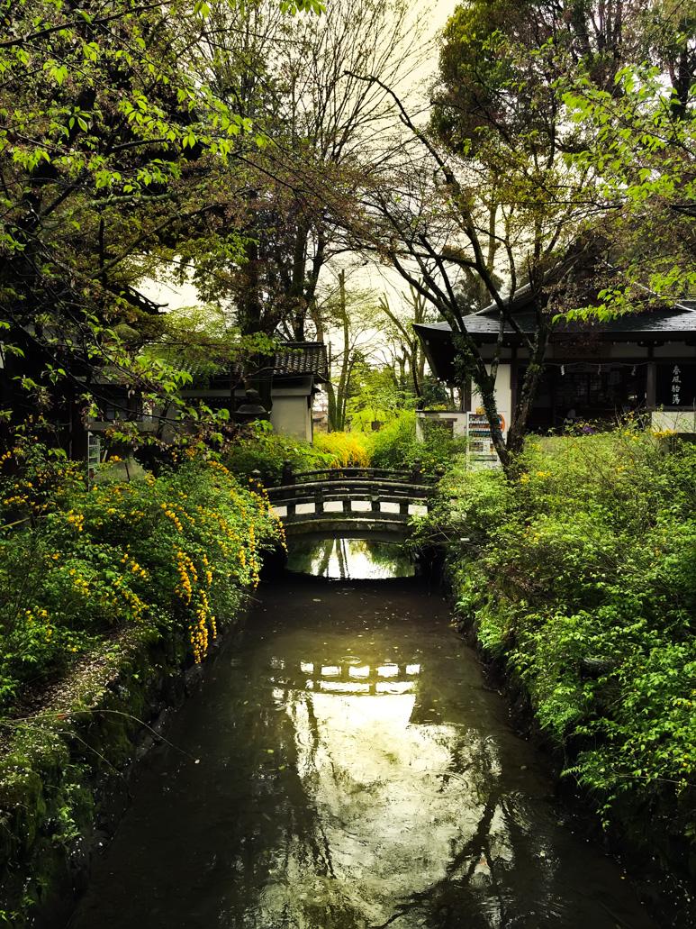 Matsuo Taisha Shrine, Bridge, Kyoto