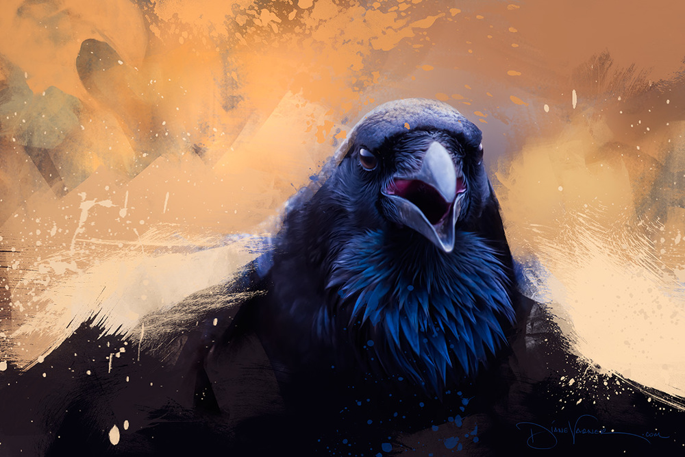 """We Rise"" - A Black Raven rising from the ashes..."