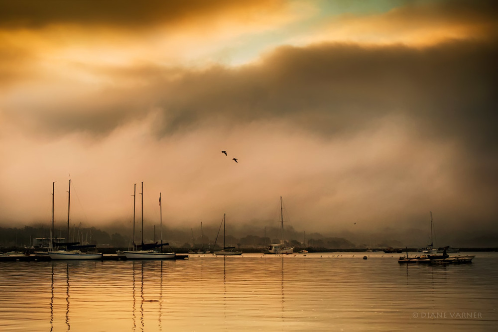 Half Moon Bay Harbor Boats in Fog