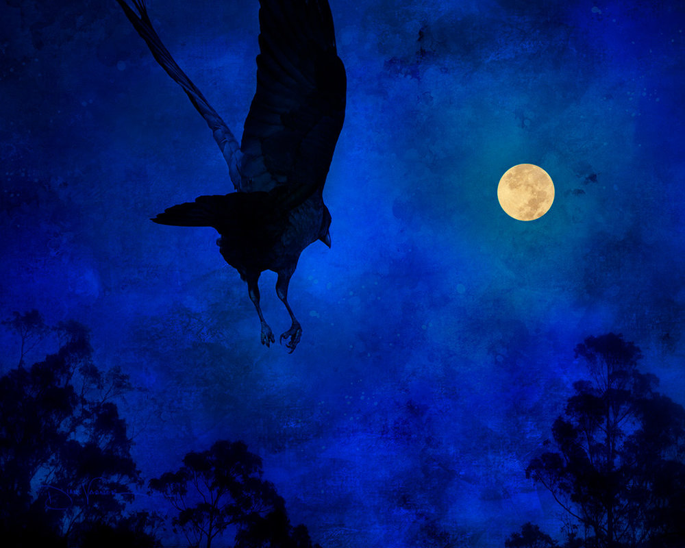 blue-night-raven-moon