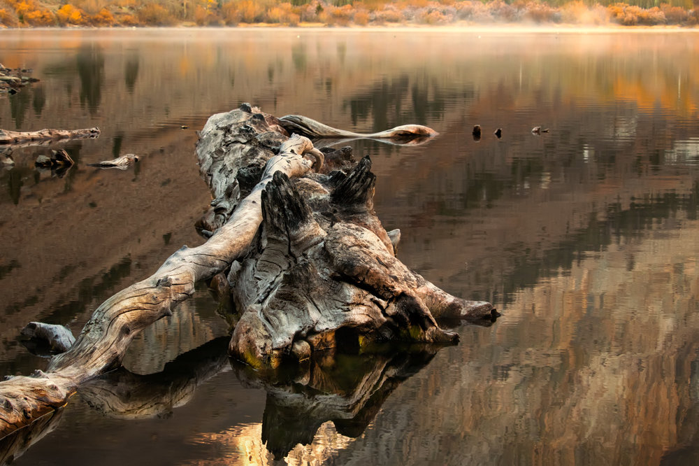 Drifting in Autumn - Parker Lake - Eastern Sierra