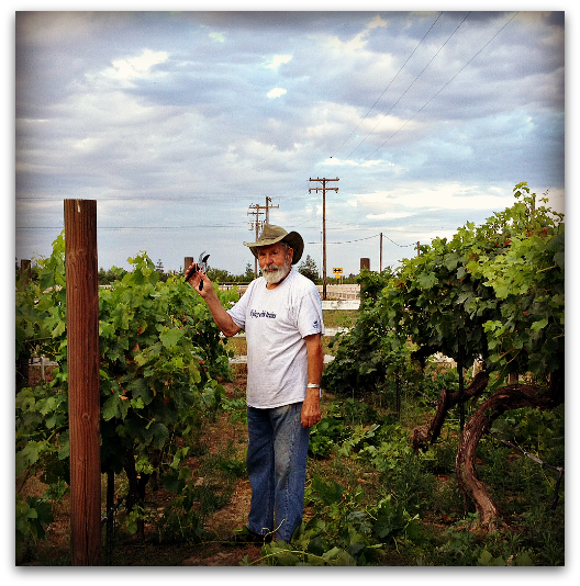 Thinning The Table Grapes