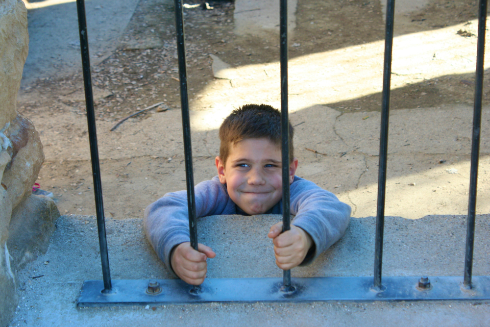 Cute prisoner