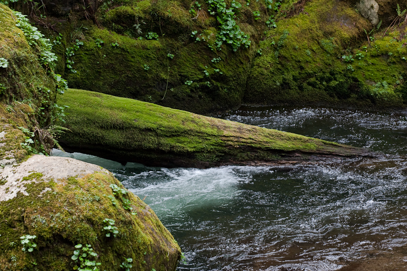 Sweet Creek, Oregon