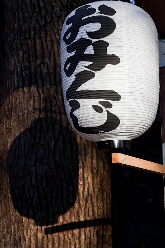 Meiji Shrine in the Morning