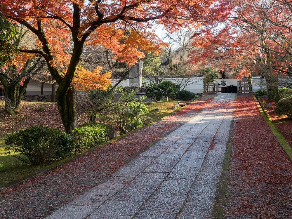 Inside Yōgen-In.