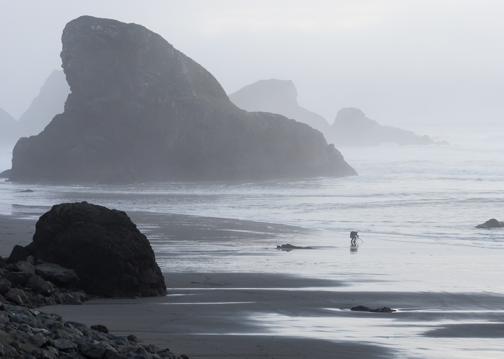 A foggy evening along southern Oregon Coast.