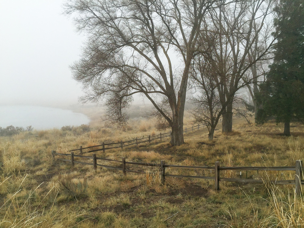 Fog at Malheur NWR Visitor Center