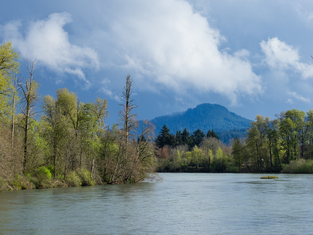 Spencer Butte from Willamette River