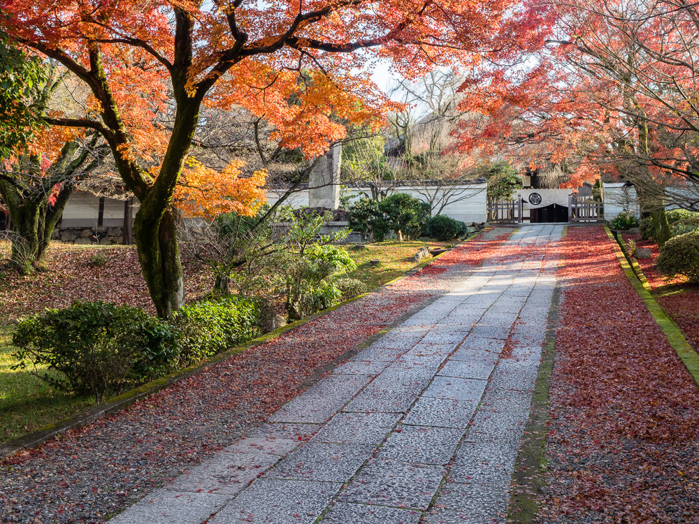Autumn Path at Yogen-in