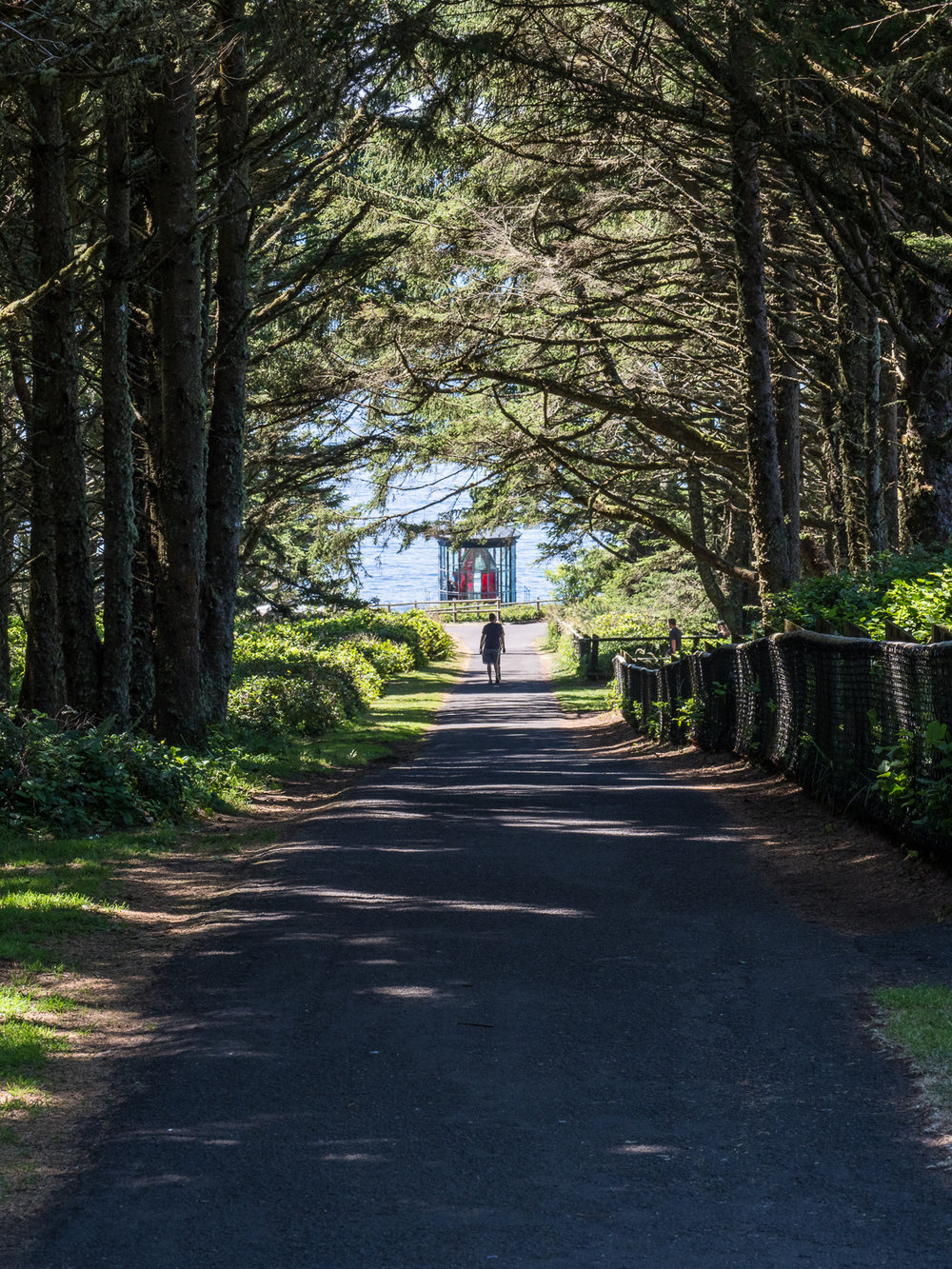 Path to Cape Meares Lighthouse