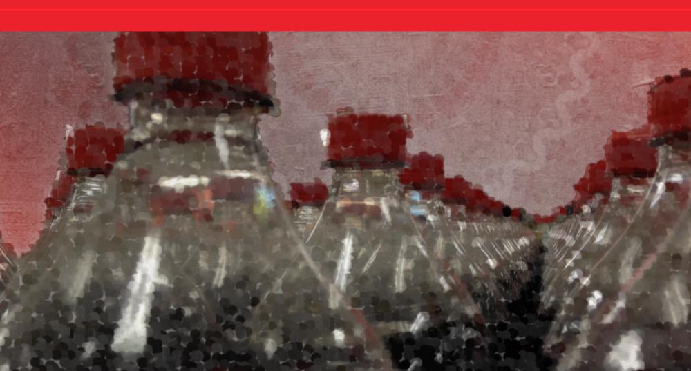 Long Bottles Aligned PNG.png