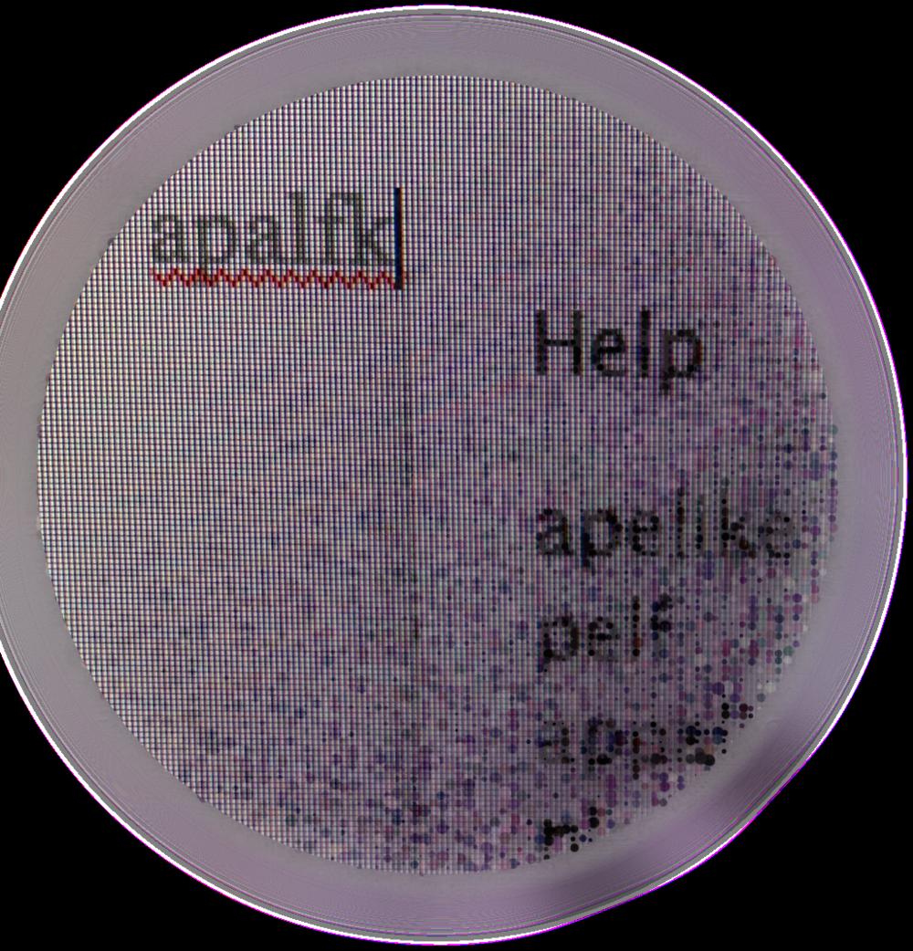 Apalfk PNG 8.png
