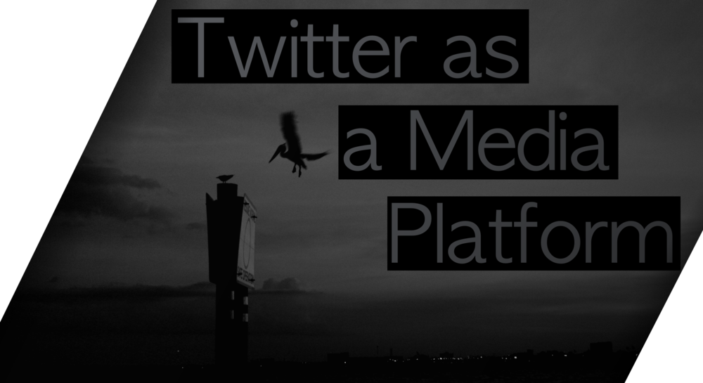 Twitter as Platform PNG.png