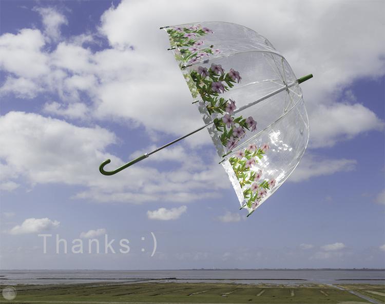 My Ella Doran Pinky Umbrella catches sunlight.