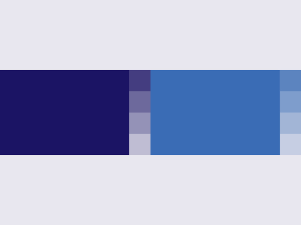 Credius Brand Showcase3.jpg