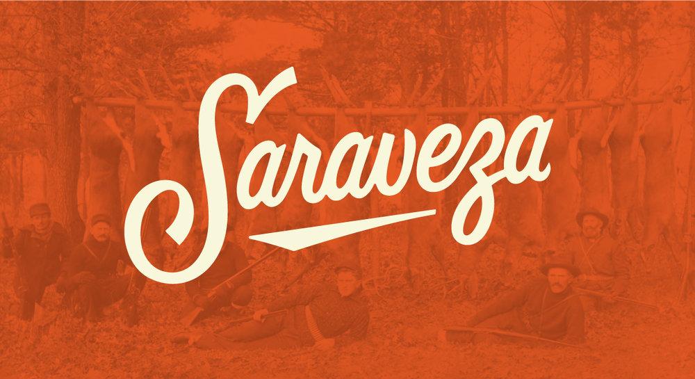 saraveza_webstory3.jpg