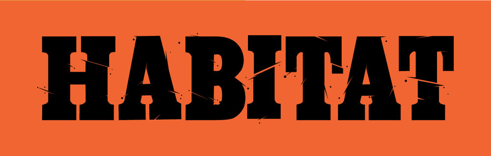 habitat skateboards typography