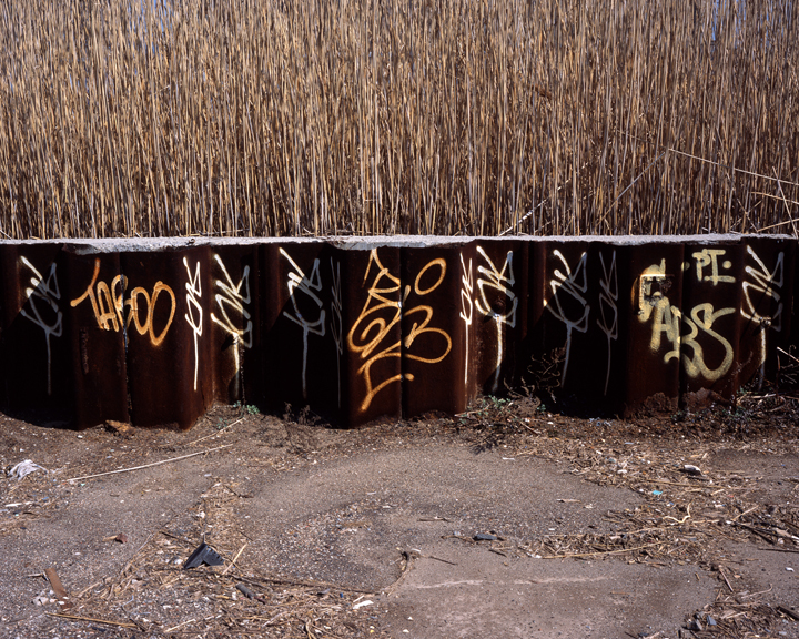 Abandoned Lot, 2005