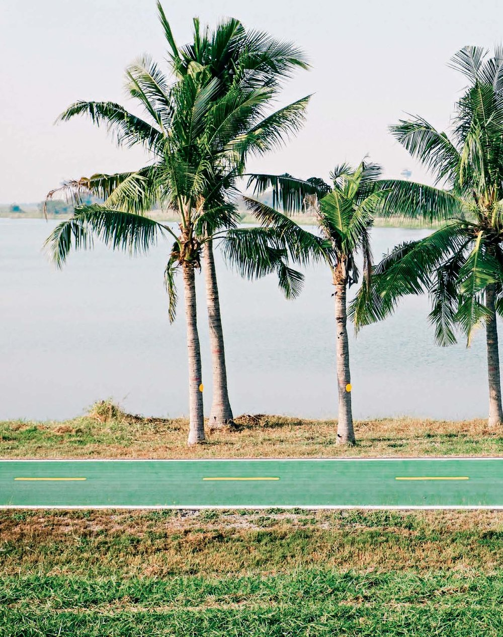 Bicycle Diaries 1.jpg
