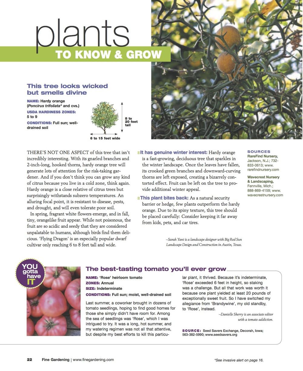 Fine Gardening trifoliate orange article copy.jpg