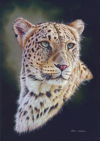 Persian Leopard.