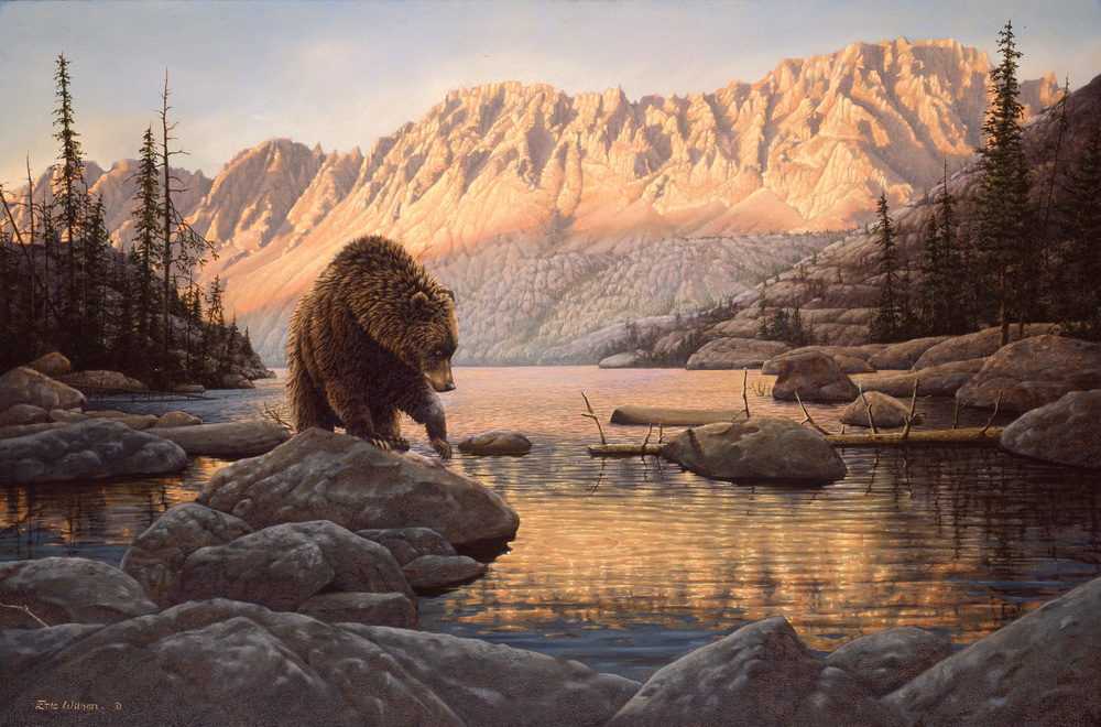 Eric Wilson Wildlife Artist-Browse paintings individually
