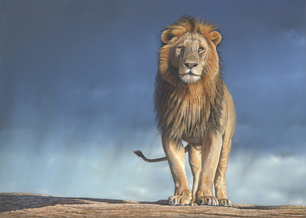 Rainmaker -African Lion Painting