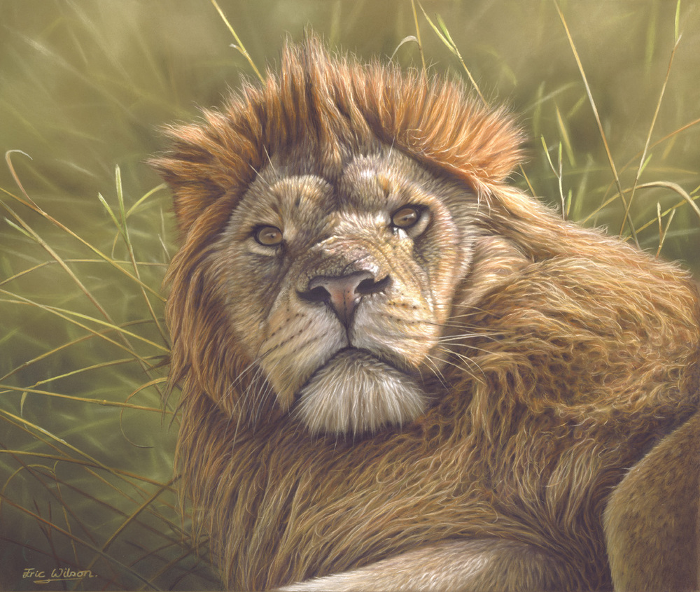 'Who disturbed the King?' Pastel 18.5 x 15.5 inches