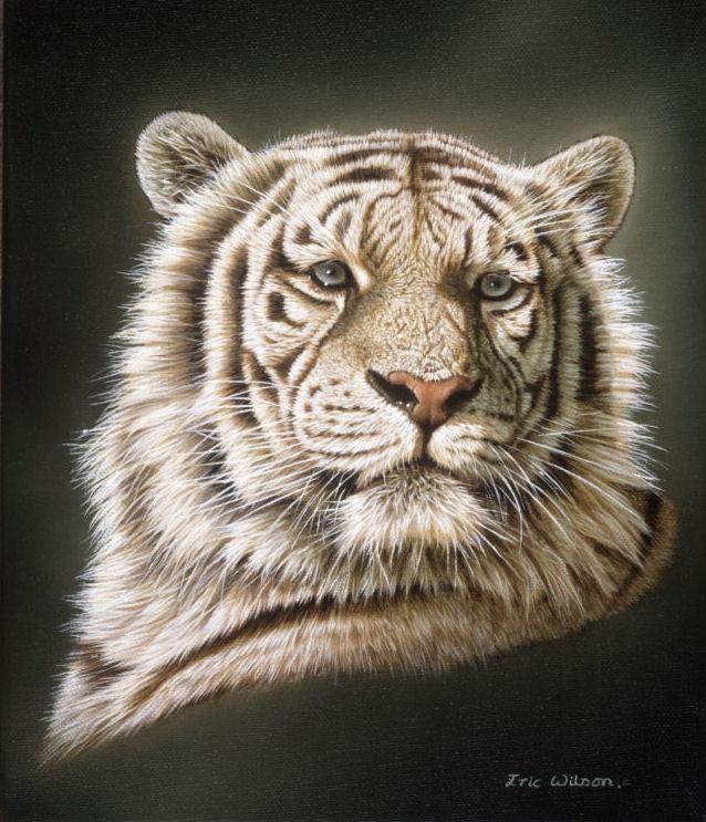 2b0990f04ac4f Eric Wilson Wildlife Artist-Gallery slideshow - Wildlife
