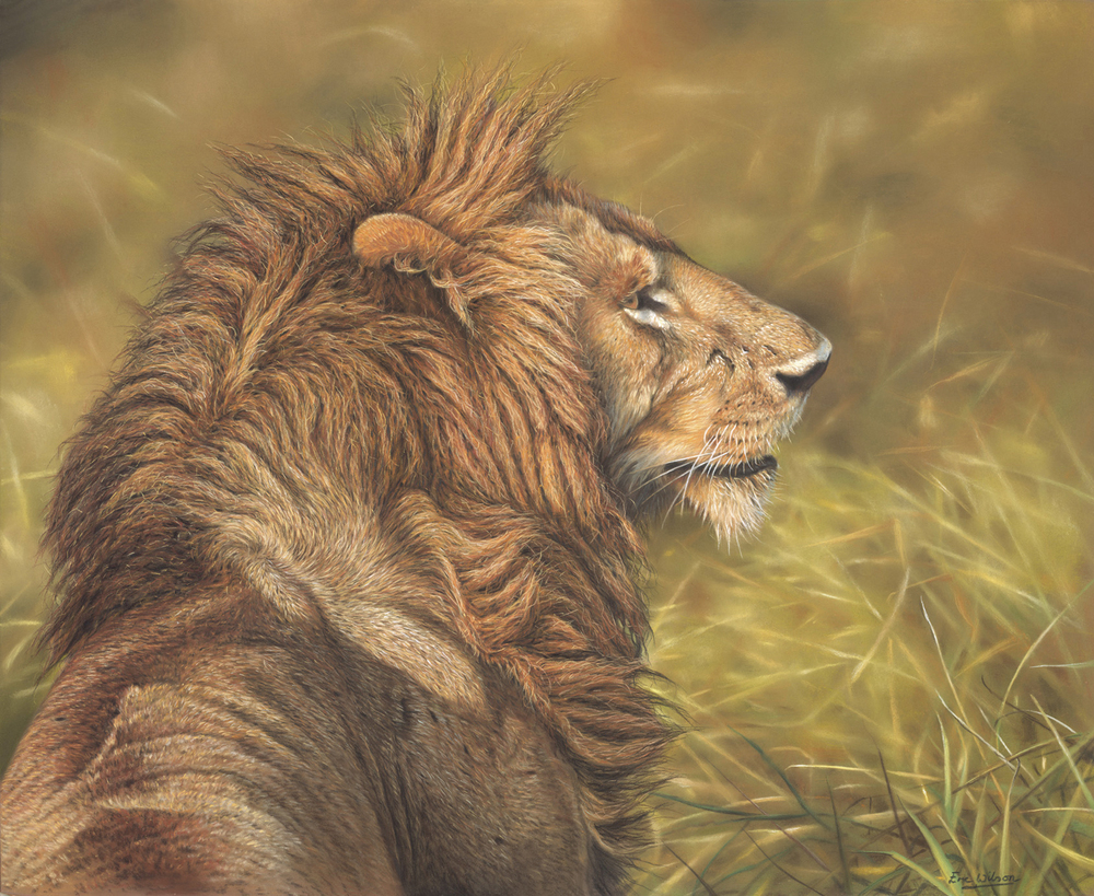 Mara Lion in Pastel