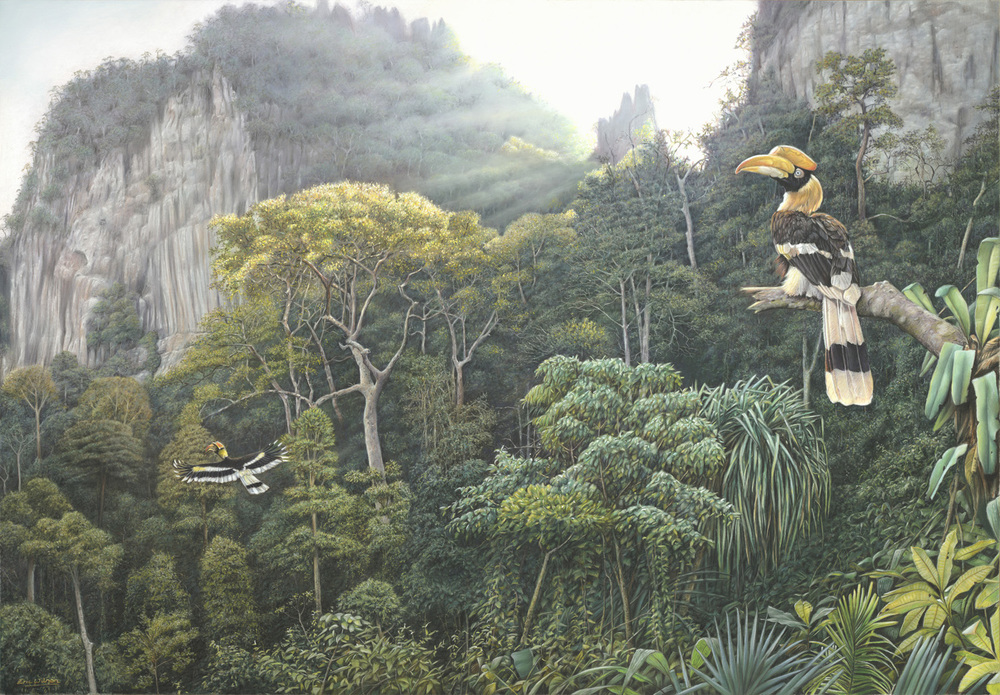 Great Hornbills of Khao Sok, Thailand. Pastel.