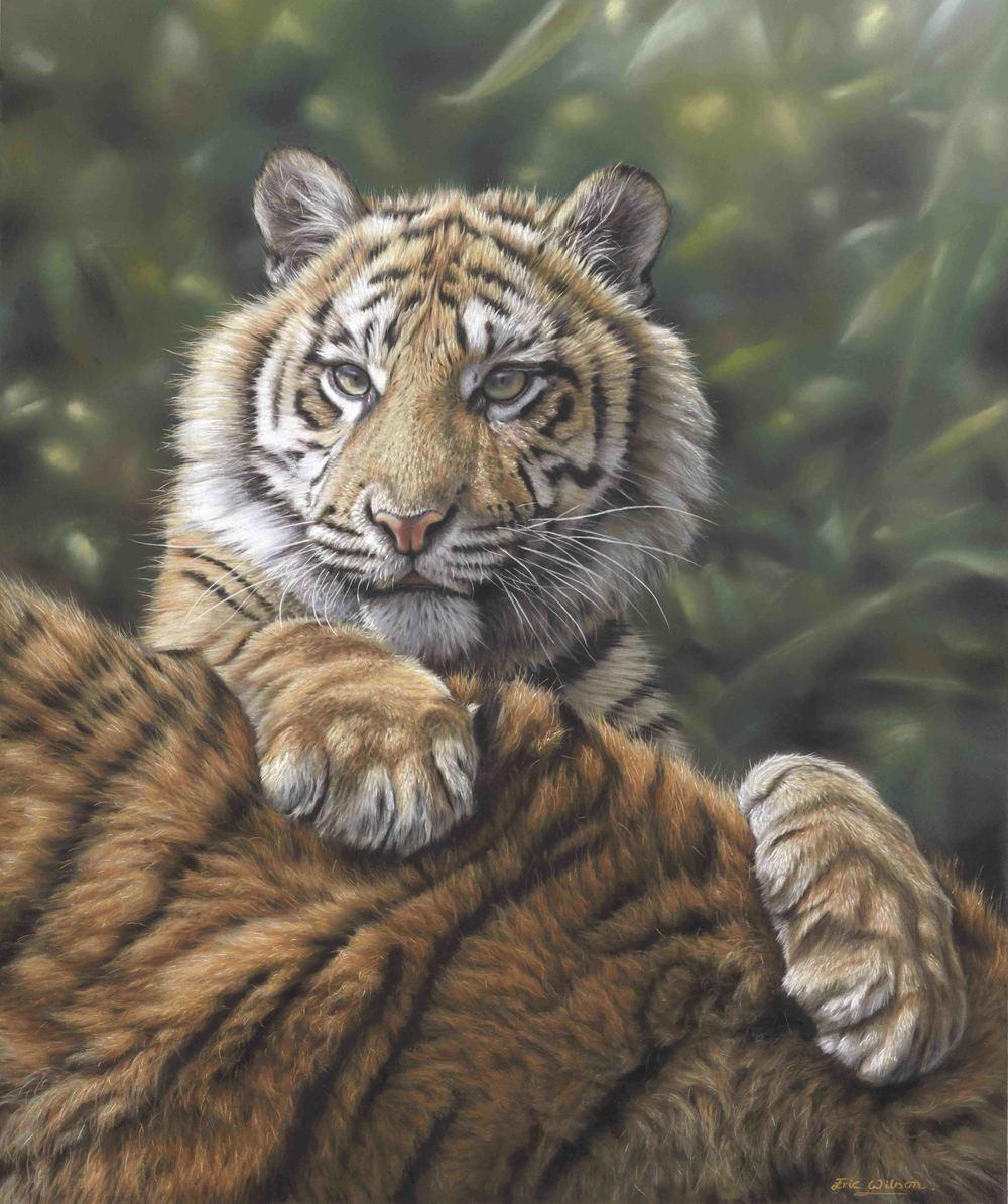 Sumatran Tiger Cub with mother. Pastel - Original SOLD.