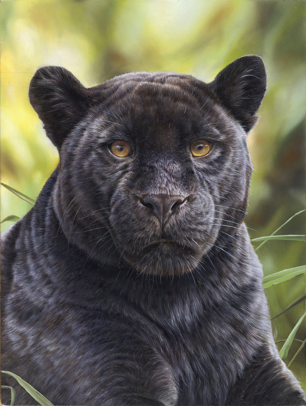 Black Panther. Oil painting. Original available.