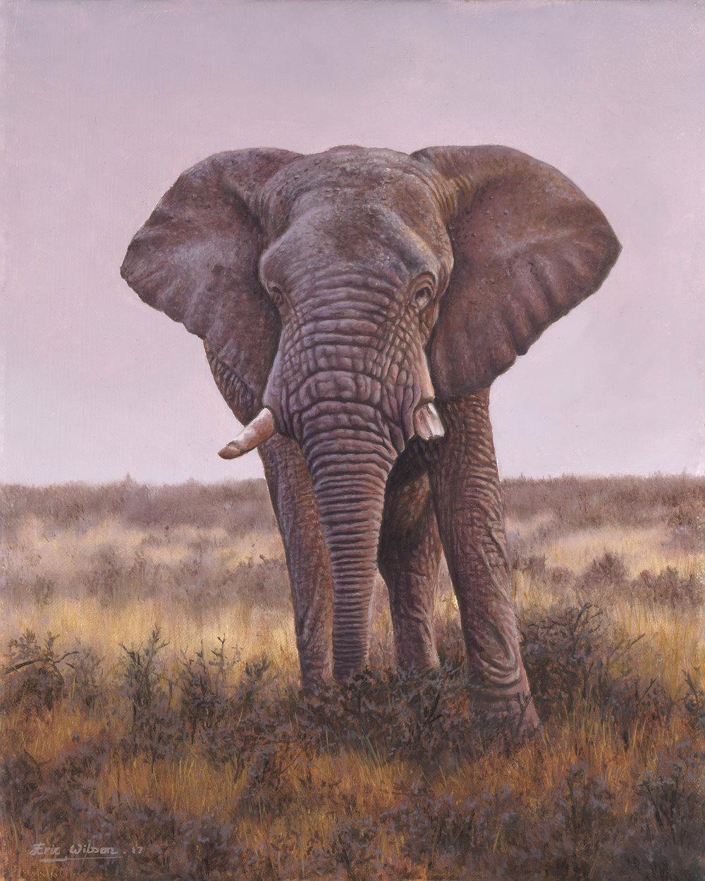elephadj2.jpg
