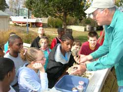Up close and personal is the experience kids enjoy at the Annapolis Maritime Museum as they learn about the life cycle of the oyster.