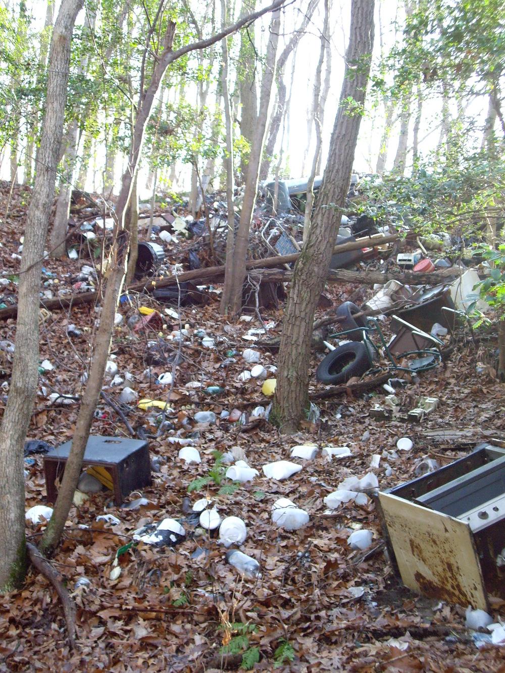 Dump1.JPG