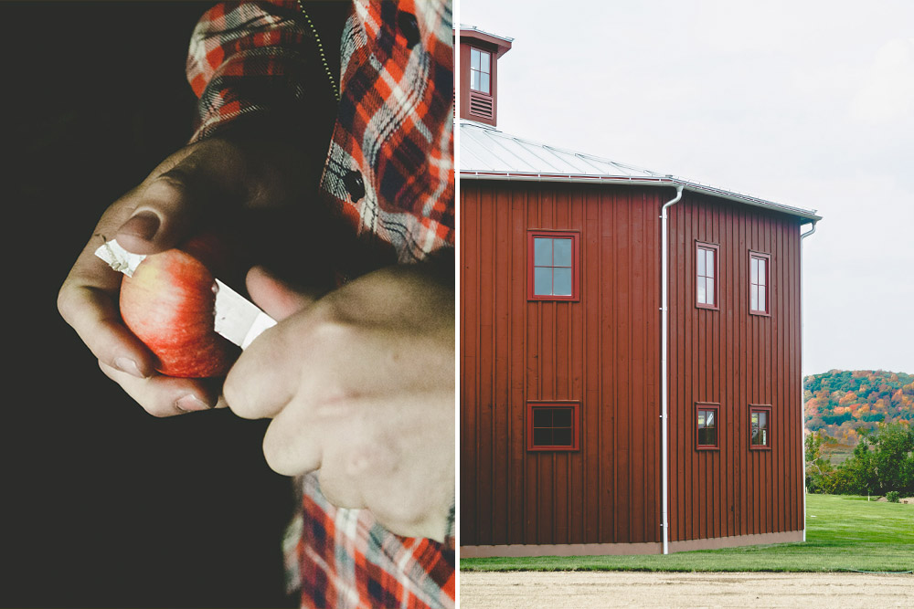 Ryan Burk of Angry Orchard slicing in to an apple in cold storage on the Hudson Valley orchard.
