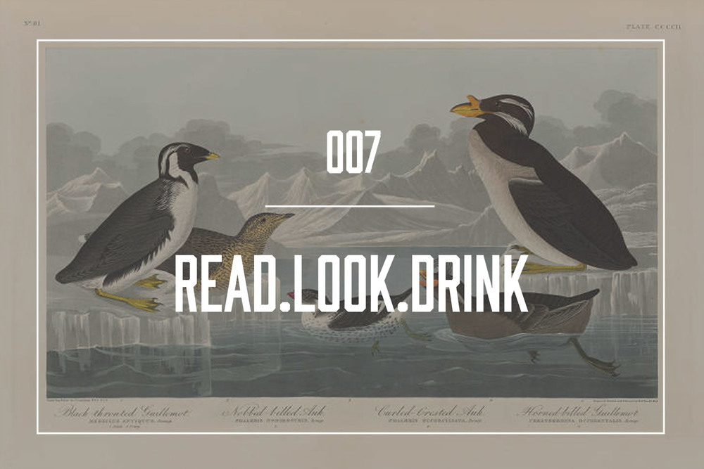 Image from The Public Library of Cincinnati's Audubon Archive