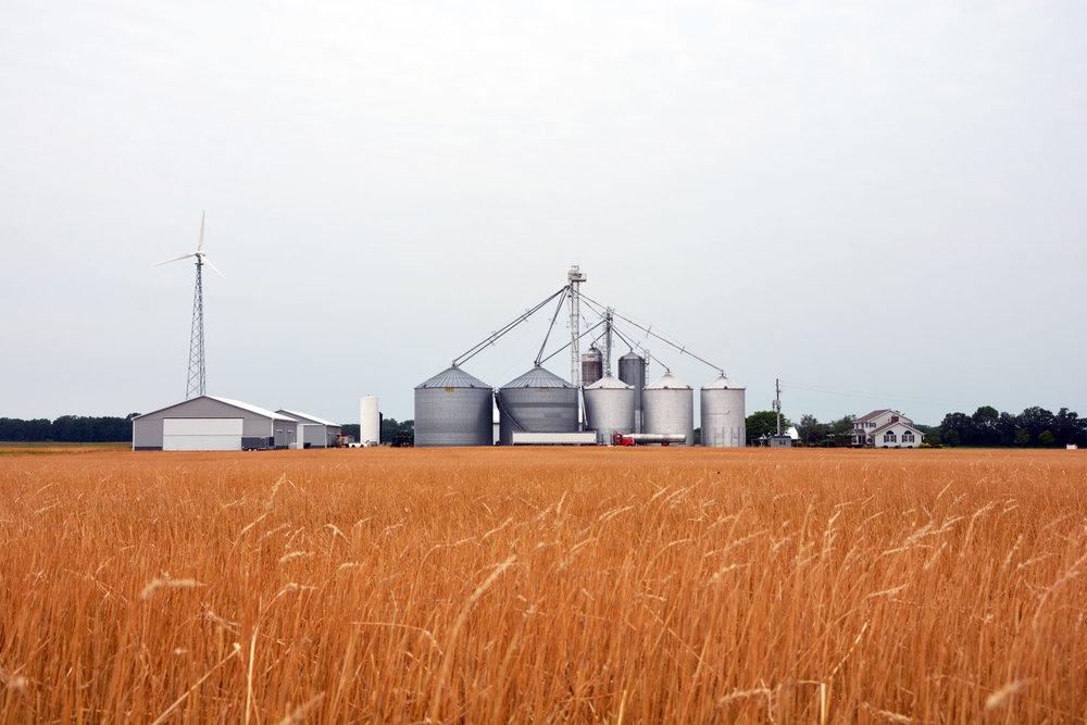 farm even.jpg