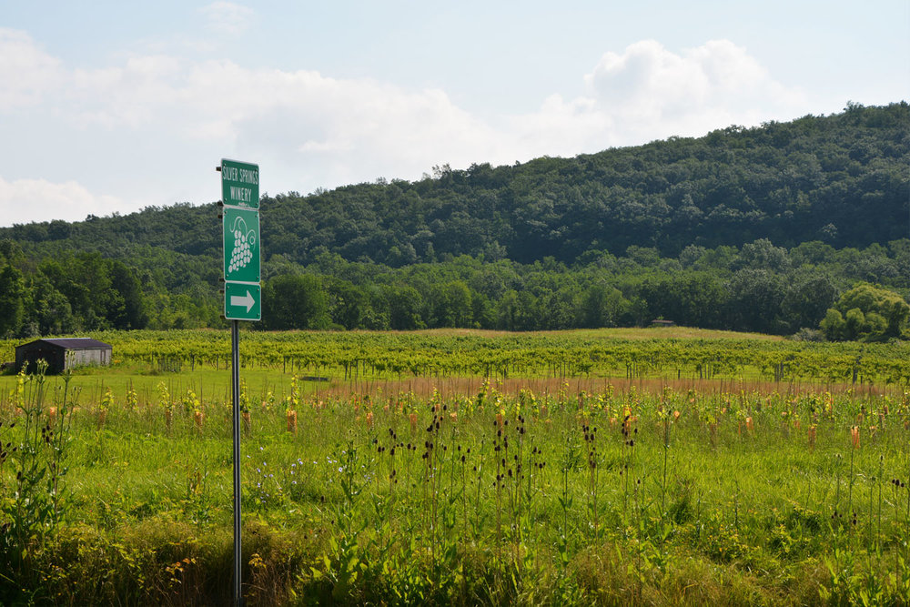 winery sign on road.jpg