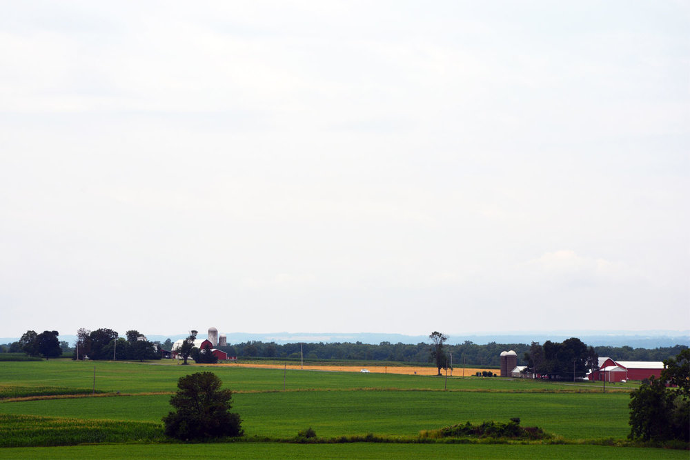 farm land 2.jpg