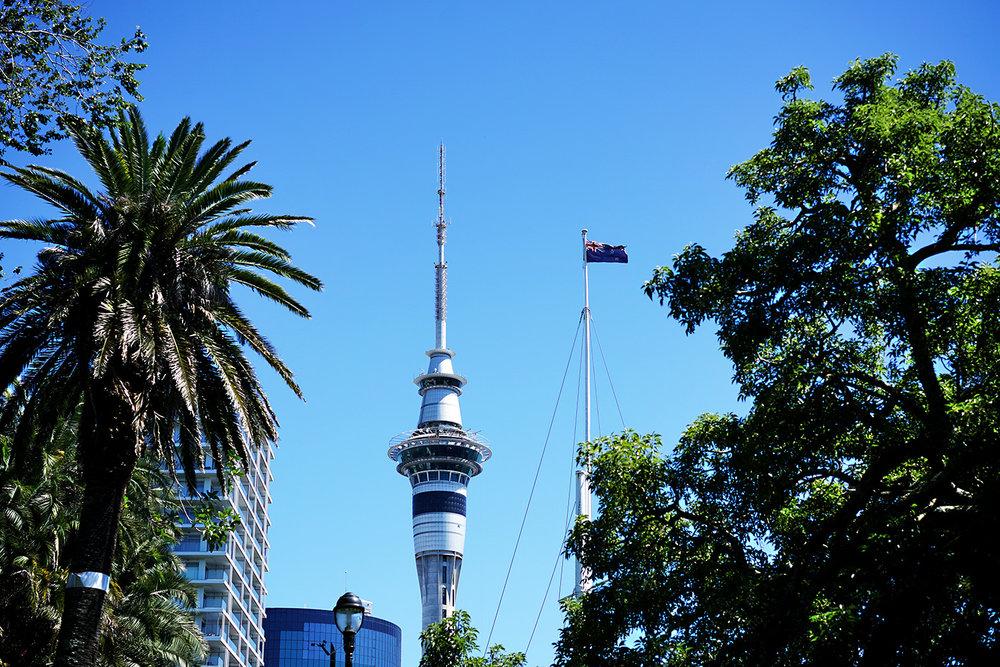 NZ Auckland 1.jpg