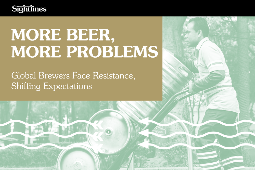morebeermoreproblems.cover.png
