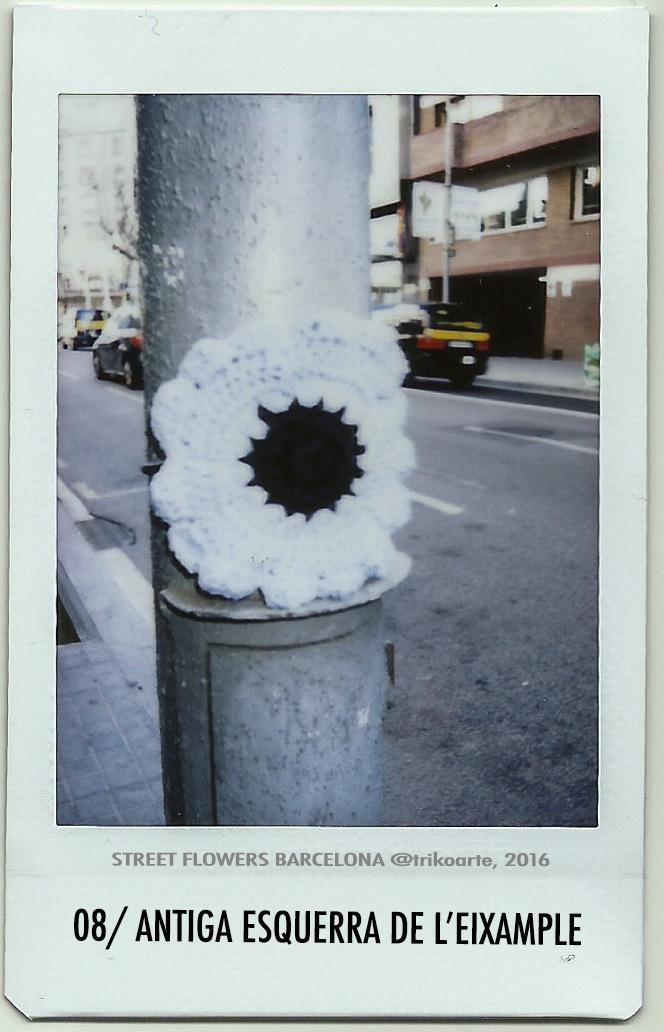 08_DISTRITO 2 STREET FLOWERS BARNA-8.jpg